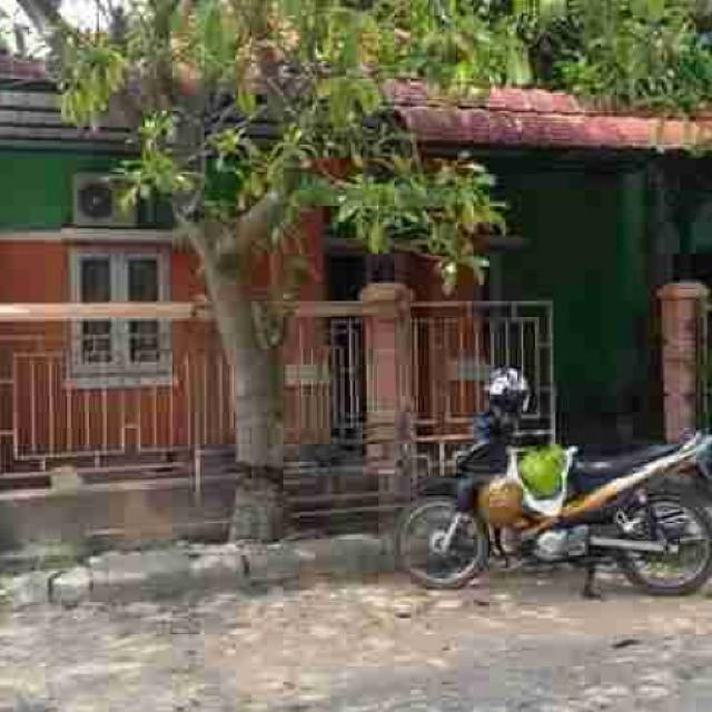 Anggrek Sari