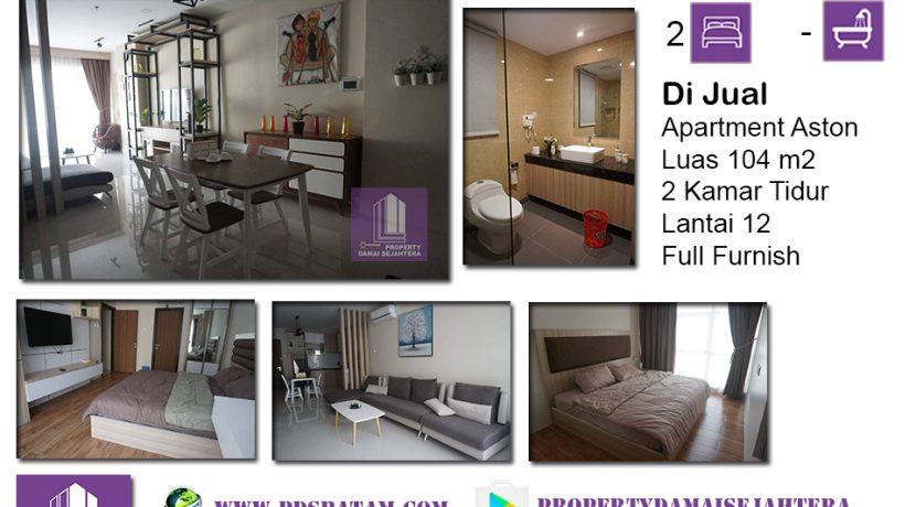 Apartment Aston ANI 2.6M